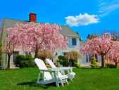 House in spring — Stock Photo