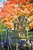 Adirondack chair in front of trees — Stock Photo