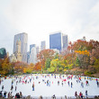 Ice skaters — Stock Photo #8867133