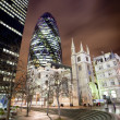 Stock Photo: Gherkin