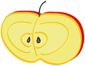 Half apple — Stock Vector