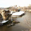 Tiber Island covered by snow — Stock Photo #8868661