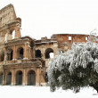 Coliseum covered by snow — Stok Fotoğraf #8868773