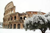 The Coliseum covered by snow — Стоковое фото
