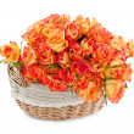 Basket of roses — Stock Photo