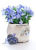 Klokken in een bloempot — Stockfoto