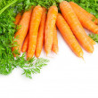 A bunch of carrots . - Stock Photo
