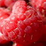 Ripe red raspberries — Stock Photo