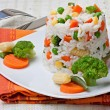 Rice and vegetables — Stock Photo