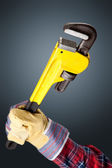 Pipe Wrench — Stock Photo