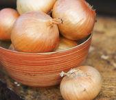Self grown organic onions in a bowl — Stock Photo