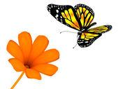 Blume und Schmetterling auf weißem Hintergrund — Stockfoto