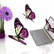 Butterflies take off from laptop to flower — Stock Photo #8366568