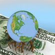 Globe germinated roots in dollar — Stock Photo #8366571