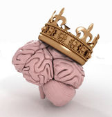 Brain with crown — 图库照片