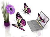 Motyle zdjąć z laptopa do kwiatów — Zdjęcie stockowe