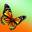 Butterfly on color background. 3d render — Stock Photo