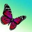 Butterfly on white background — Stock Photo #8420164