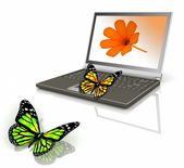 Icon of the laptop with the butterfly — Stock Photo