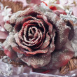 decorative rose — Stock Photo
