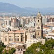 Malaga — Stock Photo #9983983
