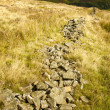 ������, ������: Collapsed Dry Stone Wall