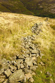 Collapsed Dry Stone Wall — Stock Photo