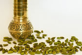 Cardamom Pods and Spice Grinder — Stock Photo