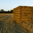Straw Bale Awaiting Collection — Stock Photo