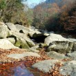 Sichuan, China, autumn leaves on the plateau — Stock Photo #10449391