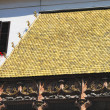 Golden roof — Stock Photo