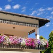 Balcony with flowers - Foto de Stock