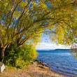 Lake Taupo — Stock Photo