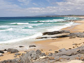 Coila Beach New South Wales, Australia — Stock Photo