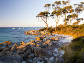 Binalong Bay Tasmania, Australia — Stock Photo