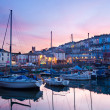 Stock Photo: Brixham Devon