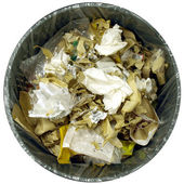 Litière bac poubelle poubelle — Photo