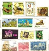 Old african stamps — Stock Photo