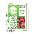 Stock Photo: Italipost stamp nobel Camillo Golgi