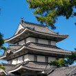 Japanese Castle Roof — Stock Photo #9516054