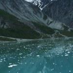 Scenery of Glacier Bay in Alaska — Stock Photo