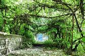 Tonel verde — Foto de Stock