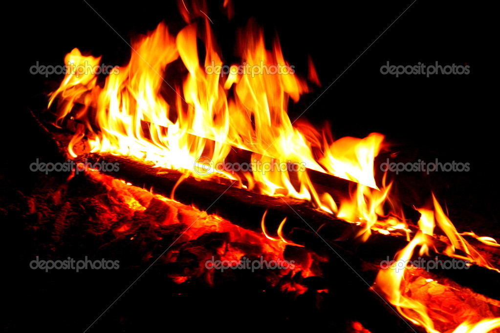 Wood burning in the fire  Stock Photo #8624379