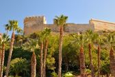 A Castle with palm trees in region of Nerja — Stock Photo