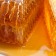 Honeycomb — Stock Photo #8470017