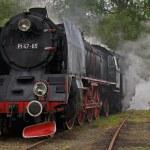 Steam loco Pt47 — Stock Photo