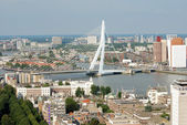 Rotterdam — Stok fotoğraf