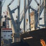 Panorama port of Antwerp — Stock Photo