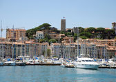 Yacht port Cannes — Stock Photo