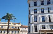 Hotel and palmtree — Stock Photo